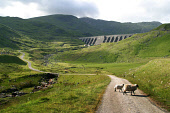 The summit of Ben Cruachan (in cloud), Argyll seen from below the hydro-electric dam of the Cruachan Reservoir. PIC: Colin McPherson/SCOTTISH VIEWPOINT Tel: +44 (0) 131 622 7174   Fax: +44 (0) 131 622...