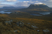 THE MOUNTAIN CUL BEAG, INVERPOLLY, ON THE WEST COAST OF ROSS AND CROMARTY, SOUTH OF LOCHINVER, HIGHLAND. Peter Cairns/ Scottish Viewpoint Tel: +44 (0) 131 622 7174   Fax: +44 (0) 131 622 7175 E-Mail :... AUTUMN,HILLS,CLOUDS