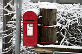 A Royal Mail post box at Fairnilee or Fernilee near Selkirk, Scottish Borders. Pic: P. Tomkins / VisitScotland / Scottish Viewpoint Tel: +44 (0) 131 622 7174 Fax: +44 (0) 131 622 7175 E-Mail: info@sco... Public 2010,winter,snow,cold,communications,postbox