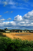 LOOKING ACROSS THE SANDY BEACH TO ELIE, WEST OF ANSTRUTHER ON THE FORTH COAST, FIFE. PIC:PAUL TOMKINS/VisitScotland/SCOTTISH VIEWPOINT Tel: +44 (0) 131 622 7174   Fax: +44 (0) 131 622 7175 E-Mail : in... SUMMER,SUNNY,PEOPLE,COAST,FLOWERS