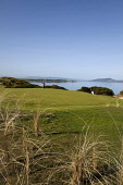Castle Stuart Golf Links, situated between Inverness and Nairn, on the Moray Firth coast.  Picture Credit : Paul Tomkins / VisitScotland / Scottish Viewpoint Tel: +44 (0) 131 622 7174 Fax: +44 (0) 131... Public 2011,april,spring,sunny,summer,course,club,open,highland,highlands,green,flag,putt,hole,golfer,coastal,water