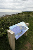 Information board on the Berwickshire Coastal Path at Cove, Scottish Borders. Picture Credit: Paul Tomkins / VisitScotland / Scottish Viewpoint Tel: +44 (0) 131 622 7174   Fax: +44 (0) 131 622 7175 E-... Public 2011,summer,coast,coastal,walking,footpath,activity,sign,signage,long,distance