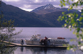 LOOKING THROUGH TREES TO PASSENGERS DISEMBARKING THE FERRY FOR THE INVERSNAID HOTEL MOORED AT THE SMALL JETTY ON LOCH LOMOND- EXTENDING NORTH FROM BALLOCH TO ARDLUI A DISTANCE OF 24 MILES MAKING IT BR... SPRING,PEOPLE,WATER,MUNRO,TRANSPORT,MOUNTAIN,SUNNY