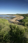 The beach at Shell Bay, on the route of the Fife Coastal Path, near Elie, East Neuk of Fife. Picture Credit : Paul Tomkins / VisitScotland / Scottish Viewpoint   Tel: +44 (0) 131 622 7174  E-Mail : in... Public 2012,summer,sunny,walk,walking,water,coast,coastal,long,distance,footpath,sand,sandy