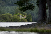 Loch an Eilein Castle on an islet in Loch an Eilein, Rothiemurchus Estate, near Aviemore, Cairngorms National Park, Highlands of Scotland. Picture Credit : Paul Tomkins / VisitScotland / Scottish View... Public 2012,summer,ruin,ruins,building,heritage,trees,forest,forestry,water,island,CNP