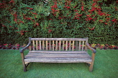 A PARK BENCH IN THE RENOWNED VICTORIAN GARDENS AT DIRLETON CASTLE- A 13C STRONGHOLD WITH 14/15C ALTERATIONS, DIRLETON,  EAST LOTHIAN. PIC: PAUL TOMKINS/VisitScotland/SCOTTISH VIEWPOINT Tel: +44 (0) 13... FLOWERS,BORDER,SEAT,SUMMER,HISTORIC SCOTLAND,HERITAGE