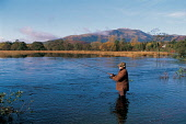 A FISHERMAN KNEE DEEP IN THE RIVER TEITH FLY FISHES THE WATER NEAR CALLANDER, WITH A SNOW DUSTED BEN LEDI VISIBLE BEHIND. PIC: PAUL TOMKINS/VisitScotland/SCOTTISH VIEWPOINT Tel: +44 (0) 131 622 7174... ACTIVITY,PEOPLE,SPORT,FISH,WADERS,SUNNY,AUTUMN