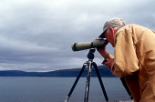 BIRDWATCHER, DAVID WOODHOUSE USES HIS TELESCOPE TO LOOK OUT TO SEA WHILST LEADING A WILDLIFE TRIP ON THE ISLE OF MULL, INNER HEBRIDES. PIC: P.TOMKINS/VisitScotland/SCOTTISH VIEWPOINT Tel: +44 (0) 131... SUMMER,PEOPLE,ACTIVITY,TWITCHER,TWITCHING,TRIPOD