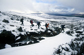 A GROUP OF WALKERS RETURN TO BASE AFTER A NIGHT IN A SNOW HOLE IN THE CAIRNGORM NATIONAL PARK DURING A MOUNTAIN INNOVATIONS WINTER SKILLS TRAINING COURSE AND SNOW HOLE EXPEDITION, WITH A VIEW TOWARDS... 2004,WINTER,WALK,SNOW,RUCKSACKS,RUCKSACK,MOUNTAINS,MOUNTAINEERING,MOUNTAIN,HILL WALKING,HILL WALKER,EXTREME,CLIMBING,CAIRNGORMS,ADVENTURE,ACTIVITY
