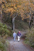 A COUPLE TAKE AN AUTUMN WALK ALONG A PATH THROUGH THE WOODED GROUNDS OF LEWS CASTLE, STORNOWAY, THE ISLE OF LEWIS, OUTER HEBRIDES PIC: P.TOMKINS/VisitScotland/SCOTTISH VIEWPOINT Tel: +44 (0) 131 622 7... ACTIVITY,WESTERN ISLES,WALKING,WALKERS,TREES,ROMANTIC,PATH,ISLAND,AUTUMN