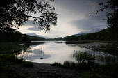 DUBH LOCHAN NEAR ROWARDENNAN WITH BEN LOMOND IN THE DISTANCE.  PIC: P.TOMKINS/VisitScotland/SCOTTISH VIEWPOINT Tel: +44 (0) 131 622 7174   Fax: +44 (0) 131 622 7175 E-Mail : info@scottishviewpoint.com... 2006,WATER,TREES,SUMMER,STIRLING DISTRICT,SILHOUETTE,REFLECTION,FORESTRY,CENTRAL REGION,CALM,ATMOSPHERIC