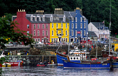 FISHING BOATS MOORED AT THE HARBOUR AT TOBERMORY WITH THE COLOURFULLY PAINTED HOUSES BEHIND, ISLE OF MULL, INNER HEBRIDES.PIC: P.TOMKINS/VisitScotland/SCOTTISH VIEWPOINTTel: +44 (0) 131 622 7174  Fax:... COAST,WATER,TRAWLER,SUMMER