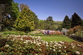 ACHAMORE GARDENS ON THE ISLE OF GIGHA, INNER HEBRIDES.   Picture Credit : P.Tomkins / VisitScotland / SCOTTISH VIEWPOINT Tel: +44 (0) 131 622 7174   E-Mail : info@scottishviewpoint.com This photograph... Public 2006,SUMMER,SUNNY,ISLAND,ARGYLL,ATTRACTION,VISITOR,TOURIST,HORTICULTURE,FLOWERS,PLANTS,PEOPLE,COUPLE
