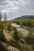 THE CAIRNGORMS AND RIVER FESHIE IN GLEN FESHIE, ABOVE FESHIEBRIDGE NEAR KINCRAIG, STRATHSPEY - IN THE CAIRNGORM NATIONAL PARK, HIGHLAND.  PIC: P.TOMKINS/VisitScotland/SCOTTISH VIEWPOINT Tel: +44 (0) 1... AUTUMN,AUTUMNAL,SUNNY,WATER,HILL,HILLS,TREES,FORESTRY,2006,HIGHLANDS,SCOTLAND