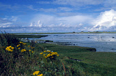 LOOKING OVER THE FORESHORE TO THE SETTLEMENT OF EOCHAR (GAELIC : IOCHDA), ON THE WEST COAST OF SOUTH UIST, OUTER HEBRIDES. Picture: SUE ANDERSON / SCOTTISH VIEWPOINT Tel: +44 (0) 131 622 7174   Fax: +... ISLAND,WATER,SUNNY,ISLE,ISLANDS
