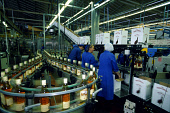 THE EDRINGTON GROUP BOTTLING PLANT AT DRUMCHAPEL, GLASGOW. PIC: GLYN SATTERLEY/SCOTTISH VIEWPOINT Tel: +44 (0) 131 622 7174   Fax: +44 (0) 131 622 7175 E-Mail : info@scottishviewpoint.com This photogr... BOTTLE,WHISKY,SCOTLAND,PRODUCTION LINE,PRODUCTION,MANUFACTURE,INTERIOR,INDUSTRY,FAMOUS GROUSE,EMPLOYEES,EMPLOYEE,BOTTLES