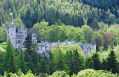 LOOKING OVER TREES TO BALMORAL CASTLE (A ROYAL RESIDENCE SINCE 1852 AND DESIGNED BY PRINCE ALBERT AND WILLIAM SMITH) ON THE SOUTH SIDE OF THE RIVER DEE, EAST OF BRAEMAR, ABERDEENSHIRE.   PIC: S.BUCHAN... BUILDING,SUNNY,SUMMER,ROYALTY,ROYAL,HERITAGE,FORESTRY,FLAG POLE
