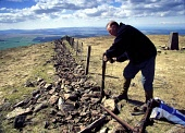 WILLIAM GALLOWAY, ESTATE DIRECTOR FROM CARMICHAEL, MENDS A FENCE AT THE SUMMIT OF TINTO HILL, NEAR BIGGAR, SOUTH LANARKSHIRE. PIC: IAIN MCLEAN/SCOTTISH VIEWPOINT Tel: +44 (0) 131 622 7174   Fax: +44 (... ESTATE MANAGEMENT,SUNNY,SUMMER,RURAL WORK,RURAL EMPLOYMENT,OUTDOOR WORK,LAND MANAGEMENT,HILL VIEWS,FENCE MAINTAINANCE