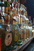 A DETAIL OF VARIOUS BOTTLES OF SPIRITS, LIQUEURS AND COCKTAIL MIXERS ON THE GANTRY OF THE BAR AT THE TIJUANA YACHT CLUB- A RESTAURANT ON HANOVER STREET, EDINBURGH. PIC: RICHARD CAMPBELL/SCOTTISH VIEWP... BOTTLE,TEQUILA,INTERIOR,DRINKING
