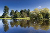 Trees reflected in the calm water of the Boating Pond, Cooper Park, Elgin, Moray. Keith Fergus / SV 2013,summer,sunny,relection,mirror,tree,recreation,town