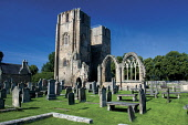 Looking over the graveyard to Elgin Cathedral, Elgin, Moray. Keith Fergus / SV 2013,summer,sunny,building,religion,grave,graves,gravestones,gravestone,attraction,visitor,visitors,tourist,tourists,tourism,lantern,north,heritage,history,ruin,ruins