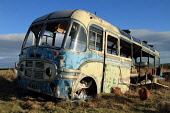 Old Bedford bus which has been abandoned for decades near Lyness, Hoy, Orkney. 2011,winter,sunny,rusty,coach,neglect,neglected,dumped,eyesore,derelict,forlorn,desolate,scrap,broken,decayed,weathered,vintage,chicken,hen