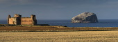 Looking over fields to the ruined remains of Tantallon Castle with the Bass Rock visible beyond, East Lothian. Darren Miller / Scottish Viewpoi 2013,autumn,sunny,Ruin,Ruins,Historic,Heritage,Scotland,HS,Visitor,Attraction,Tourist,Tourism,Rock,Water,Coast,Coastal,panoramic,Lighthouse,Island,Cliffs,Cliff
