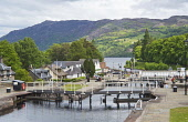 The Caledonian Canal at Fort Augustus, at the south west end of Loch Ness, Highlands of Scotland. Dennis Barnes / Scottish Viewpoi 2013,summer,sunny,village,water,engineering,lock,locks,attraction,visitor,visitors,tourist,tourists,tourism,people,person,tree,trees,cottage,cottages,housing,house,houses,tow,path,towpath