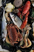 a platter of mixed fresh seafood and fish Paul Dodds / Scottish Viewpoint shellfish,food,fresh,seafood,produce,product,crabs,crab,urchins,urchin,platter,prawns,prawn,lobster,lobsters,salmon,no people