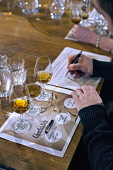 WHISKY TASTING Paul Dodds / Scottish Viewpoint people,whiskey,glass,glasses,scotch,taste,alchohol,drinks,drinking