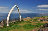 North Berwick Law, East Lothian Jack Byers/ Scottish Viewpoint coast,coastal,coastline,water,sea,bass,rock,summer,sunny,town,jaw,bone,whale,no people