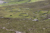 Sheep pens on the Island of Hirta in the St Kilda archipelago. Andy Bennetts / Scottish Viewpoi 2010,summer,sunny,Outer,Hebrides,western,History,heritage,remote,World,site,National Trust,Spectacular,Isolated,abandoned,Agriculture,island,islands,isle,isles