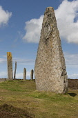 The Ring of Brodgar Neolithic stone circle, Mainland, Orkney. Andy Bennetts / Scottish Viewpoi 2011,summer,sunny,attraction,visitor,visitors,tourist,tourists,tourism,history,heritage,historic,scotland,hs,island,islands,isle,isles