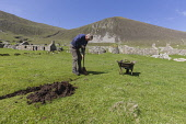 A National Trust volunteer digs out a drainage trench in the ruined village on the island of Hirta in the St Kilda archipelago. Andy Bennetts / Scottish Viewpoi 2010,summer,sunny,Outer,Hebrides,western,History,heritage,remote,World,site,National,Trust,Scotland,Spectacular,Isolated,abandoned,Agriculture,island,islands,isle,isles