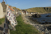 Washing hanging on the line at the village of Crovie on the north Aberdeenshire coast. Allan Wright / Scottish Viewpoin summer,sunny,sunshine,coast,coastal,coastline,water,sea,housing,cottage,cottages,shore,foreshore,path,footpath