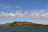 The lighthouse on Little Ross Island at the head of Kirkcudbright Bay, Dumfries and Galloway. Keith Kirk / Scottish Viewpoint summer,sunny,sunshine,coast,coastal,coastline,water,sea,light,house,solway,firth