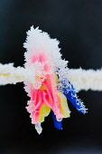 A detail of clothes pegs covered with ice on a washing line, Glen Nevis, Highlands of Scotland. Kenny Ferguson / Scottish Viewpo winter,cold,ice,freeze,freeezing,weather,close,up,snow,icy