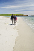 A couple walking on the beach at Dingieshowe, Mainland, Orkney. Picture Credit : Iain Sarjeant / Scottish Viewpoint  Tel: +44 (0) 131 622 7174  E-Mail : info@scottishviewpoint.com  Web: www.scottishvi... 2012,summer,sunny,island,islands,isle,isles,people,person,beach,sand,sandy,white,romantic,activity,activities,walk,walking,walker,walkers,coast,coastal,coastline,water,sea,deerness
