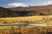 River Dee, near Braemar, Deeside, Aberdeenshire Iain Sarjeant / Scottish Viewpoi autumn,autumnal,2013,tree,trees,forest,forests,woodland,woodlands,forestry,snow,mountains,mountain,hill,hills