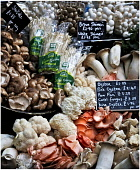 An assortment of fresh mushrooms for sale at a greengrocers. Paul Dodds / Scottish Viewpoint food,eat,eating,ingredient,ingredients,cooking,cook,produce,fresh,assortment,mushroom,mushrooms,shop,shopping,sale,for,greengrocer,greengrocers,fungi,retail,specialised,farm,price,prices,card,cards