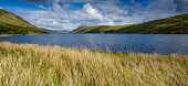 Meggat Reservoir in the Scottish Borders, Scotland Andrew Wilson/ Scottish Viewpoin Meggat,reservoir,Scottish,Borders,landscape,water,Scotland,man-made,man,made,loch,St Marys loch,grass,rushes,spring,reservoirs,summer,no,people,mountain,mountains,hill,hills,uk,u.k,great,britain