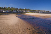 Looking over the sandy beach at Lossiemouth, Moray, Scotland, UK Dennis Barnes / Scottish Viewpoi 2014,spring,sunny,sunshine,blue,sky,skies,day,Lossiemouth,river,Lossie,Moray,Scotland,Scottish,UK,U.K,United,Kingdom,horizontal,town,housing,houses,church,spire,steeple,beach,beaches,sand,sandy,coast,