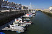 Yachts and boats moored at the harbour at Lossiemouth, Moray, Scotland. Dennis Barnes / Scottish Viewpoi 2014,spring,sunny,sunshine,blue,sky,harbour,Lossimouth,horizontal,Scotland,Scottish,UK,United,Kingdom,U.K,activity,activities,sailing,boat,boats,yacht,yachts,moored,couple,man,one,woman,walking,dog,pe