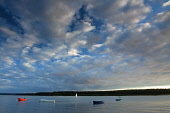Small boats moored in Findhorn Bay at twilight, by Findhorn, Moray, Scotland. Keith Fergus / Scottish Viewpoin 2014,horizontal,summer,sky,skies,Scotland,Scottish,UK,U.K,Great,Britain,clouds,cloud,evening,twilight,small,boats,sailing,dinghies,atmospheric,atmosphere,coast,coastal,coastline,water,sea,moored,Findh