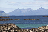 Looking towards Rum (with the tip of Eigg visible on the left) from the coast near Arisaig, Highlands of Scotland. Iain McLean / Scottish Viewpoint horizontal,day,summer,sunny,sunshine,blue,sky,skies,Arisaig,Lochaber,Eigg,Rum,Rhum,island,islands,isle,isles,coast,coastal,coastline,water,sea,activity,activities,sailing,boat,yacht,lone,mountains,Sco