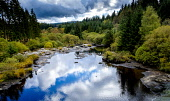 The River Dee, Dumfries and Galloway, Scotland Andrew Wilson/ Scottish Viewpoin Dumfries,Galloway,Galloway Forest,River Dee,Season,colour,overcast,rock,pools,forest,trees,water,rivers,scotland,uk,autumn,autumnal,colours,nobody
