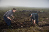 Peat cutting in the Highlands. Mike Brookes Roper / Scottish Vi vertical,outside,outdoors,day,peat,cutting,tractor,crofter,crofting,Scotland,Scottish,UK,U.K,Great Britain,Highlands,two men,60-65 years,20-30,2 people,elderly,moorland,tradition,traditional,fossil fu