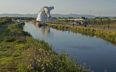The Kelpies by sculptor Andy Scott, reflected in the Forth and Clyde Canal, part of The Helix - a land transformation project in the Falkirk District. Scotland Dennis Barnes / Scottish Viewpoi Summer,sunny,sunshine,water,Kelpies,sculpture,Andy Scott,Forth,Clyde,Canal,Helix,land,transformation,project,Falkirk,public,art,Scotland,Scottish,UK,U.K,Great Britain,outdoors,daytime,group