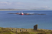 Fish farming in Scapa Flow off the coast of Hoy, Orkney, Scotland. Mark Ferguson/ Scottish Viewpoin fish,farming,Orkney,salmon,cages,Scapa Flow,UK,Scotland,Scottish,isles,islands,industry,fisheries
