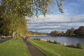 A woman walking on the path by the River Ness, with a view towards the city centre of Inverness where the cathedral and the castle are visible, Highlands of Scotland. Dennis Barnes / Scottish Viewpoi horizontal,outside,outdoors,day,autumn,autumnal,sunny,sunshine,blue sky,River Ness,Inverness,Scotland,Scottish,UK,U.K,United Kingdom,one woman only,1 person,60-70 years,elderly,fallen leaves,walker,wa